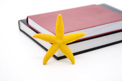 Starfish with notebook Stock Photos