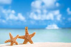 Starfish  with ocean , beach and seascape Stock Photo
