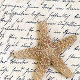 Starfish on old letter Stock Image
