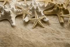 Starfish on Old Paper Stock Image