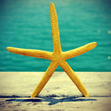 Starfish on an old wooden pier on the sea, with a retro effect Stock Photography
