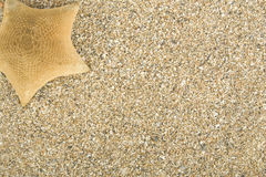 Starfish On Sand Royalty Free Stock Photography