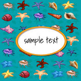 Starfish and other different sea shell Stock Photo