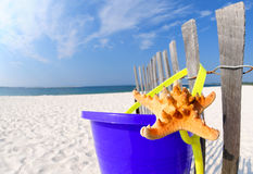 Starfish and pail on beach Stock Photos