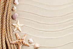 Starfish and palm leaves lying on the sea sand . There is a place for labels. Royalty Free Stock Photography