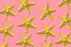 Starfish pattern on pink. Summer minimalistic background. Top view, flat lay. Starfish pattern on pink background. Summer minimalistic composition. Top view stock photography