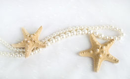 Starfish and pearls. On white background Stock Image