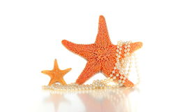 Starfish and pearls. On a white background royalty free stock photography