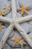 Starfish and Pebble Background Royalty Free Stock Photos
