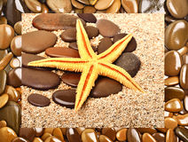 Starfish and  pebble on the sand Royalty Free Stock Photography