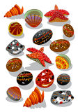 Starfish, pedras e seashell Fotos de Stock