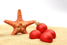 Starfish with red Christmas on sandy beach Stock Photography