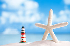 Starfish and reflection with ocean, wave and seascape Royalty Free Stock Photos