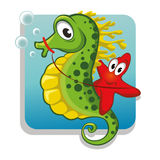 Starfish riding on the seahorse Stock Images