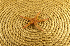 Starfish on rope coiled in a circle from above. Starfish on rope coiled in a circle from above Royalty Free Stock Image