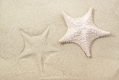 Starfish and it's imprint on sand. Background Royalty Free Stock Image