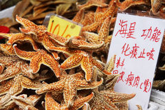 Starfish for sale stock photography