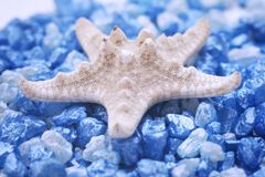 Starfish and salt. Close up Royalty Free Stock Photography