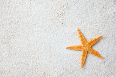 Starfish on sand Royalty Free Stock Image