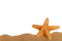 Starfish in sand. Starfish resting in sand lower frame with empty space above for text, suitable for page footer Royalty Free Stock Photos