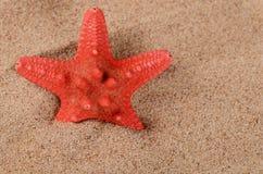 The starfish on sand Royalty Free Stock Photo