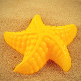 Starfish in the sand Royalty Free Stock Photos