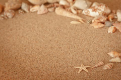 Starfish sand conch copyspace vintage Royalty Free Stock Photography