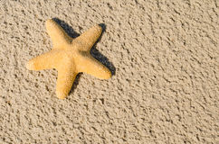 Starfish, sand. Starfish lying on the sand stock photo