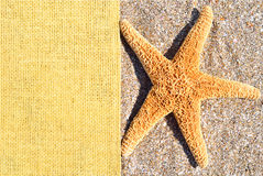 Starfish on the sand and sackings Royalty Free Stock Photos