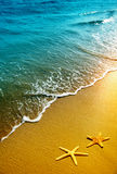 Starfish, sand and wave Stock Photos