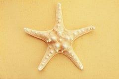 Starfish on sand Stock Image