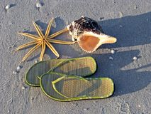 Starfish sandals seashell beach Stock Photography