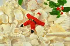 Starfish santa Royalty Free Stock Images
