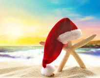 Starfish in santa hat at the seaside Royalty Free Stock Image