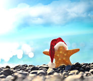 Starfish in santa hat at the seaside Stock Photo