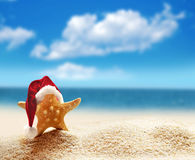 Starfish in santa hat at the seaside Stock Image