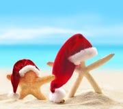 Starfish in santa hat on summer beach Stock Photo