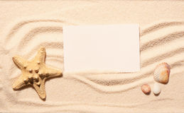 Starfish, scallop seashell, stones with white card on beach sand Royalty Free Stock Photo