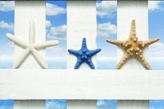 Starfish at sea on beach on vintage boards Royalty Free Stock Photos
