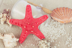 Starfish with sea salt Stock Image