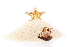 Starfish and sea shell on pile of beach sand Stock Photos