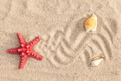 Starfish and sea shells with sand Stock Photos