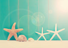 Starfish and sea shells on a teal wooden background Royalty Free Stock Photography