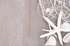 Starfish and sea shells on wooden board Royalty Free Stock Image
