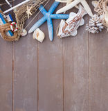 Starfish and sea shells on wooden board Royalty Free Stock Photos