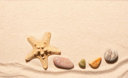 Starfish and sea stones on sand. Summer beach background Stock Photos