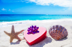 Starfish and seashell with heart by the ocean Stock Photography