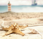 Starfish and a seashell Stock Photo