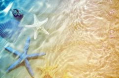 Starfish and seashell on the summer beach in sea water. Royalty Free Stock Image