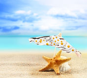 Starfish and seashell under an umbrella on a sandy beach Royalty Free Stock Images